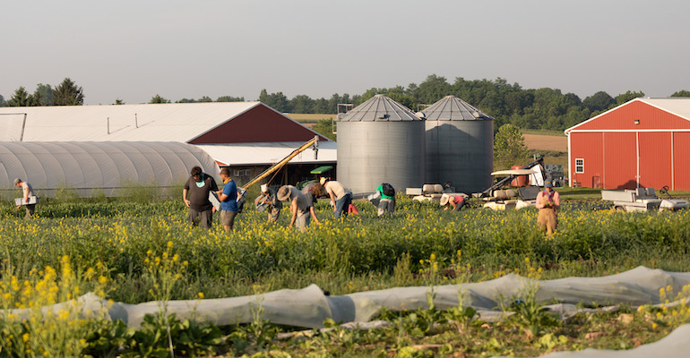 Rodale Institute organic farm-workers.jpg
