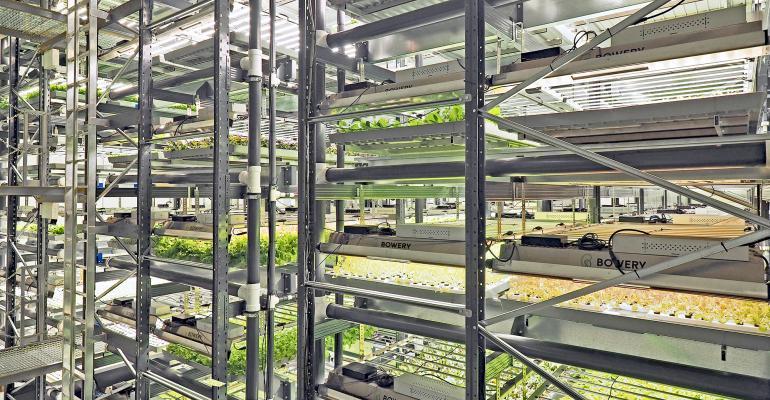 Bowery Farming_Grow Room_Photo Cred Courtesy of Bowery Farming small.jpg