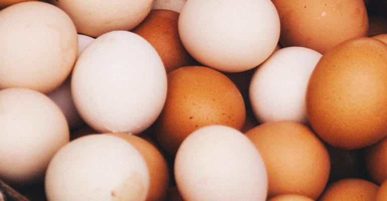 Fresh_Eggs_promo.jpg