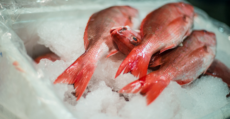 Jet_City_Grocery_Fulton_Fish_fish.png