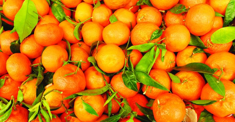 Oranges(G)-small.jpg