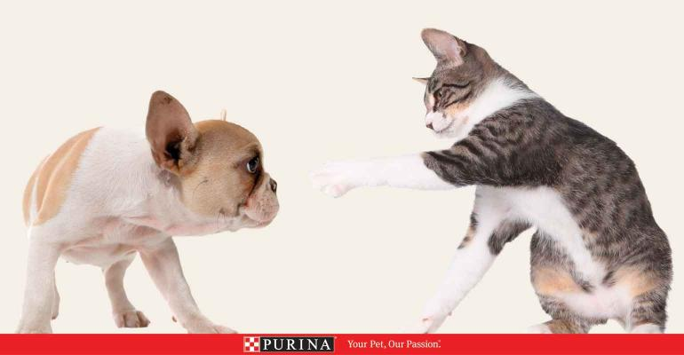 Purina_Puppy_Kitten_1540x800.jpg