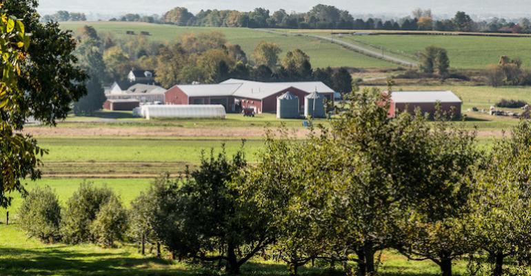 Rodale Institute organic farm-Kutztown PA.jpg