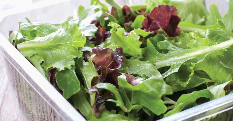 SaladsColeSlaw(T).jpg