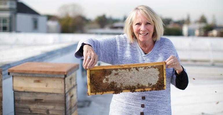alameda donna layburn bees