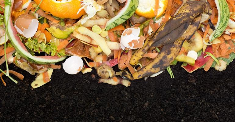 food-waste-compost_0.jpg