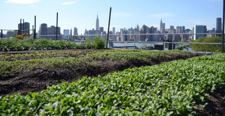 Urban Farming From Great Heights