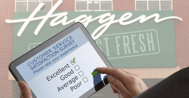 haggen-survey