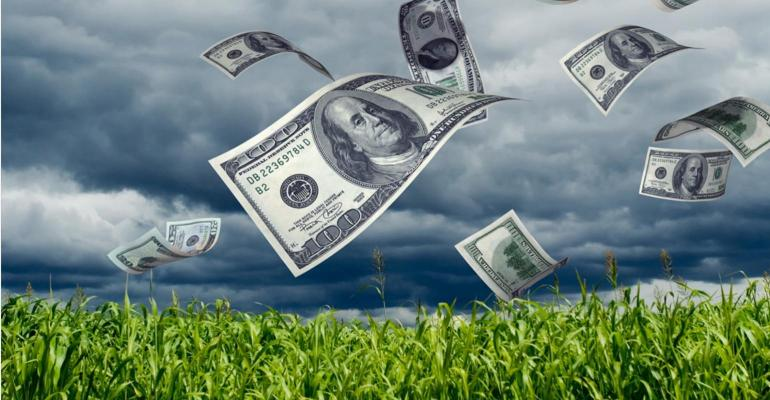 money blowing from cornfield_Kativ_iStock_Getty Images-172323492.jpg