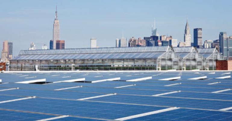 Brooklyn Greenhouse Offers Ultra-Local Lettuce