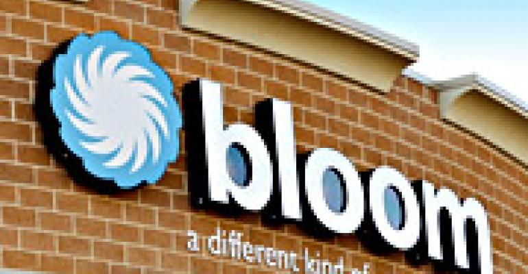 Bloom Fades at Food Lion