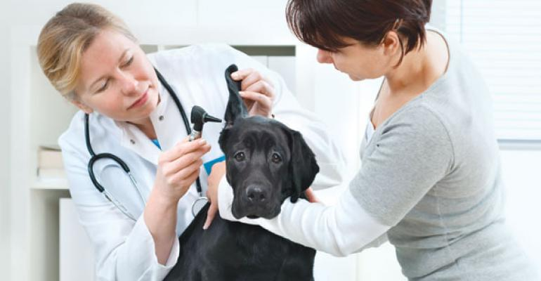 What the Vet Ordered: Pet Prescriptions