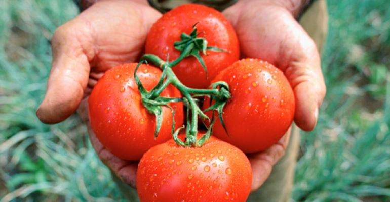 Forty percent of winter tomatoes sold in the US come from Mexico according to the Fresh Produce Association