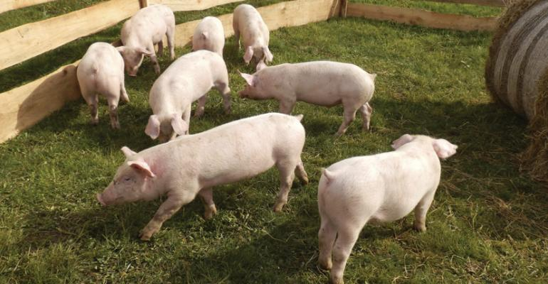ldquoIn 2012 and 2013 we saw a slew of retailers make policies to eliminate gestation crates in their pork supply chainsquot reports Matthew Prescott at the Humane Society of the United States