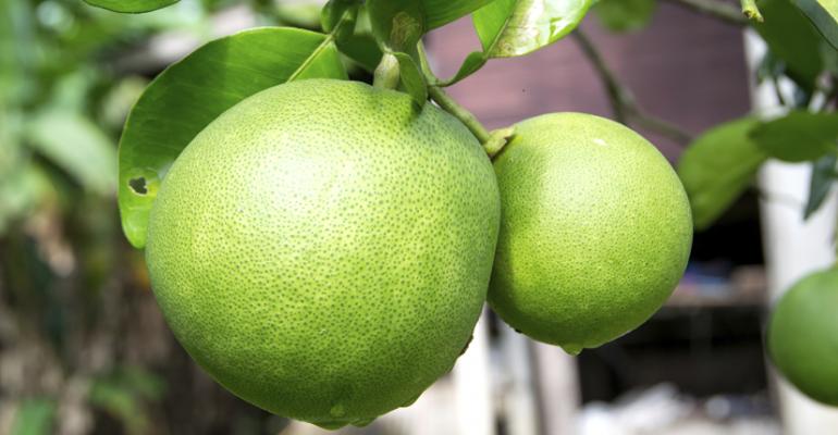 Consumers want citrus convenience