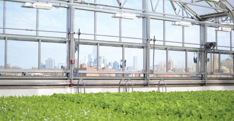 Whole Foods sources produce from store roof greenhouse