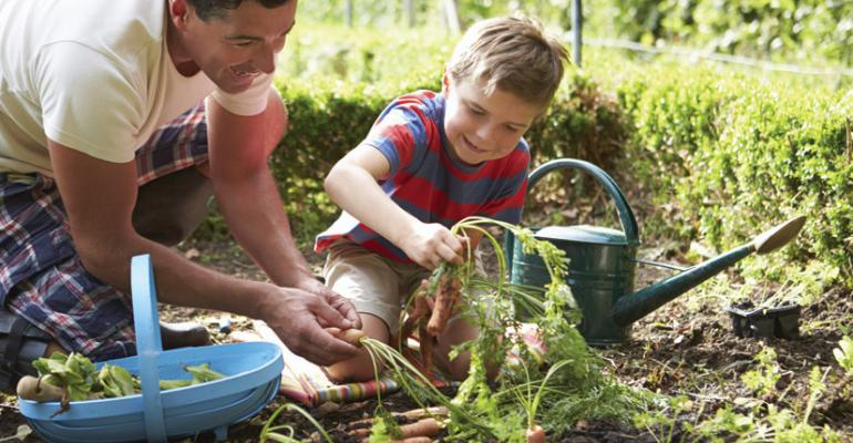 Retailers reach out to new gardeners