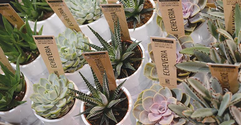 Pantone highlights key colors for florists