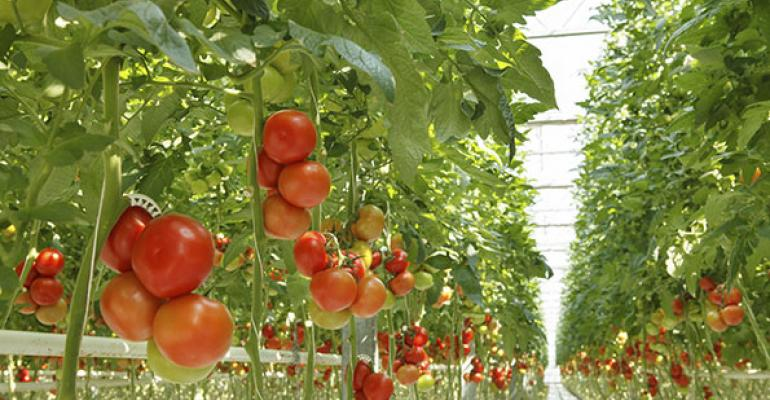 BrightFarms announces new Virginia greenhouse to supply Ahold stores