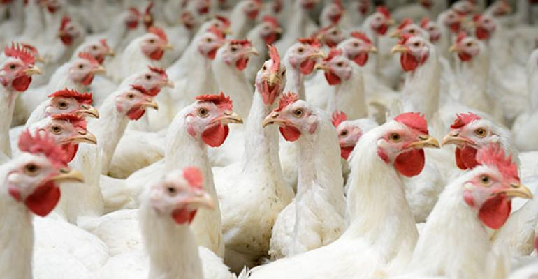 Whole Foods to source slow-growing chickens by 2024