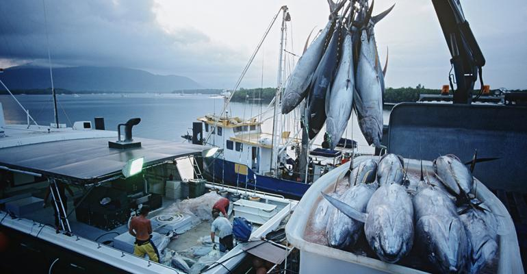 Kroger, Target announce updates on seafood sustainability