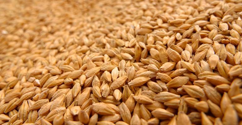 Organic Seed Growers withdraw from OTA