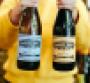 New_Leaf_Common_Vines_labels_0.png