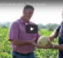 Weis highlights local suppliers in video series