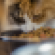 cateating.png