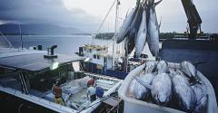 fishing-ocean-boat-promo-getty.jpg