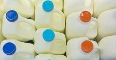 milkjugsfeature.jpg