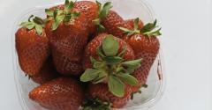 strawberry_shelf_supermarket.jpg