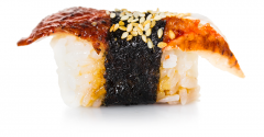 sushi-with-eel.png