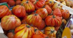 ugly-produce-tomatoes.jpg