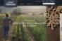 Albertsons_Digital_Marketplace_food copy.png