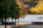 UNFI truck trees.png