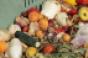 Consumer Goods Forum targets food waste