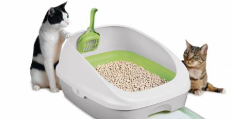 Think Outside the Box: Simple Solutions to Unlock the Potential in Cat Litter