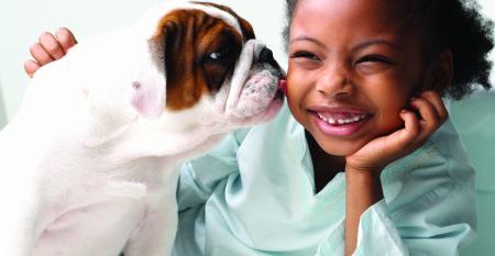 Pet trends-GettyImages-532632242.jpg