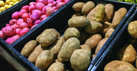 Potatoes_retail display(G).jpg