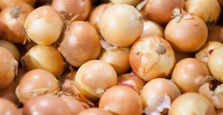 ProSource_onions.jpg