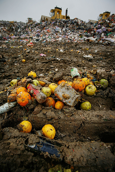 The food industry is taking steps to reduce the 80 billion pounds of food discarded in U.S. landfills annually. (Photo by Getty Images)