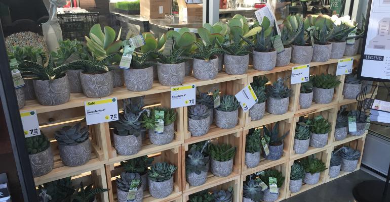 A simpler, greener floral department