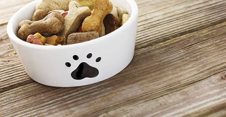 Gallery: Bottomless bowls (of pet food)