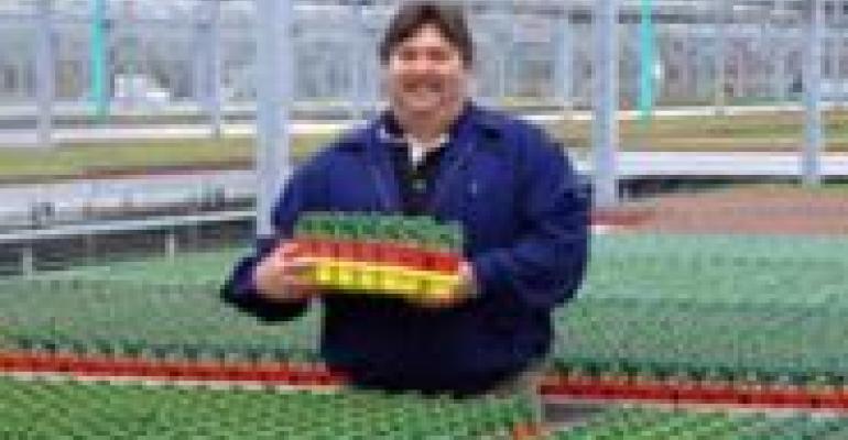 Meijer's Greener Greenhouse