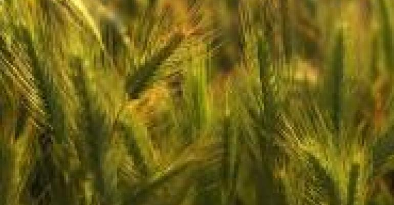 USDA Organic Update