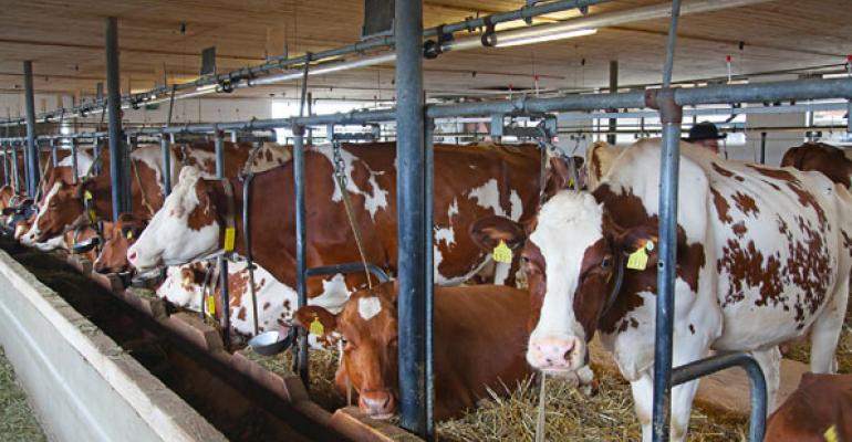 USDA Tries to Calm Mad Cow Concerns