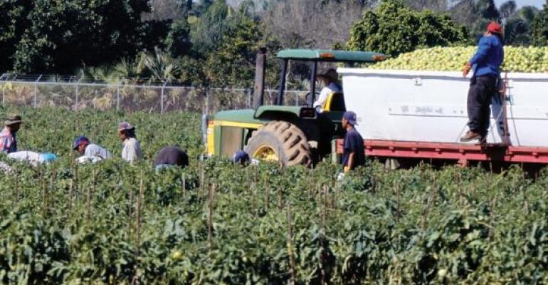 U.S., Mexico Make Tentative Tomato Deal