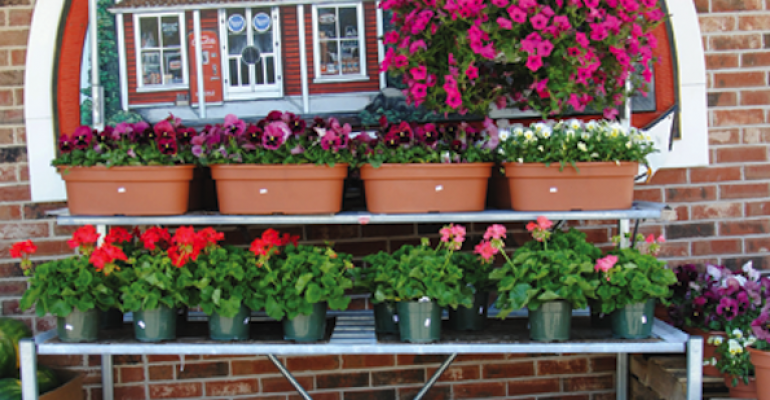 Retailer Makes Hanging Baskets Destination, Grows Sales
