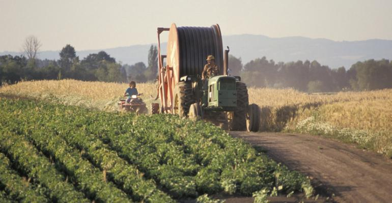 Senate Farm Bill Axes Ag Payments, Hits SNAP Funds